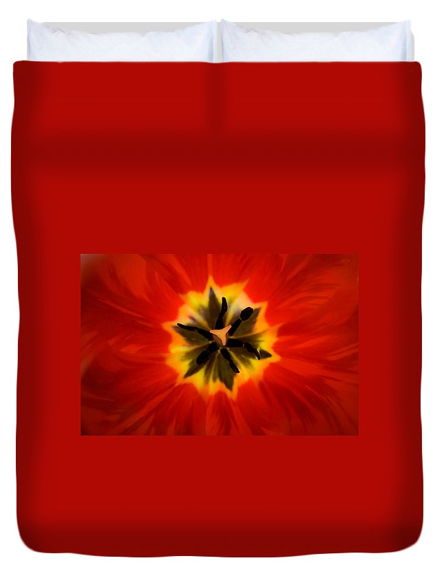 Tulip Duvet Cover featuring the photograph Tulip Explosion Kaleidoscope by Teresa Mucha