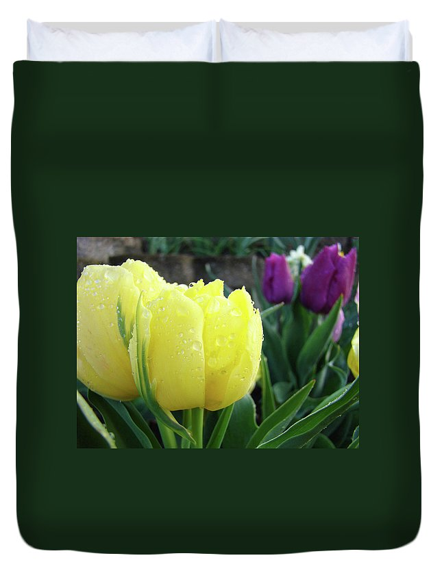�tulips Artwork� Duvet Cover featuring the photograph Tulip Flowers Artwork Tulips Art Prints 10 Floral Art Gardens Baslee Troutman by Baslee Troutman