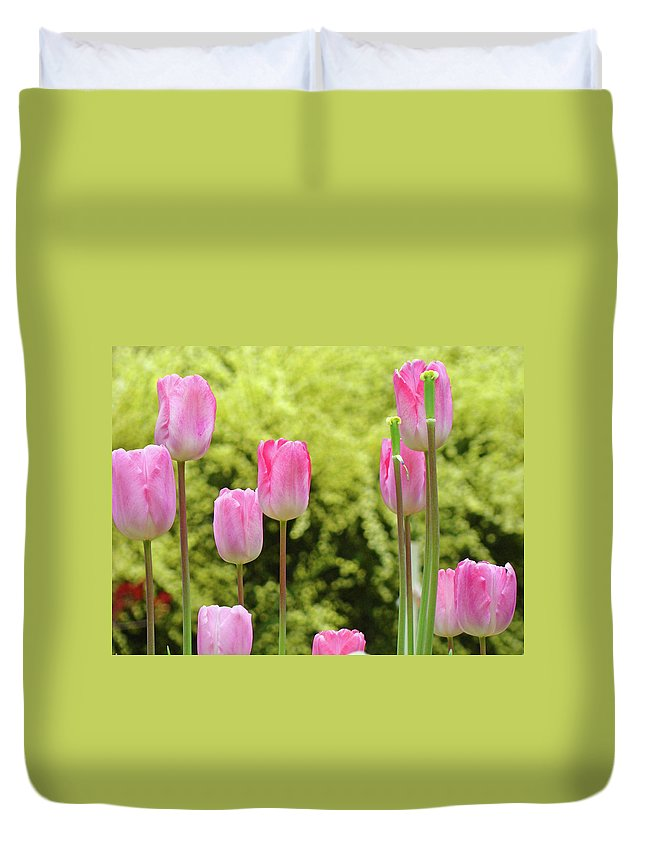 Tulip Duvet Cover featuring the photograph Tulip Garden Landscape Art Prints Pink Tulips Floral Baslee Troutman by Baslee Troutman