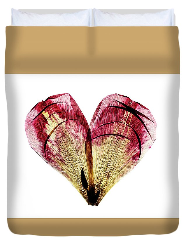 Heart Duvet Cover featuring the photograph Tulip Heart by Nailia Schwarz