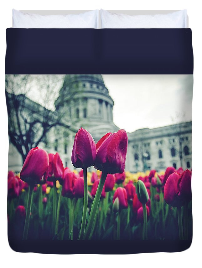 Tulips Duvet Cover featuring the photograph Tulip In Bloom by Rockland Filmworks