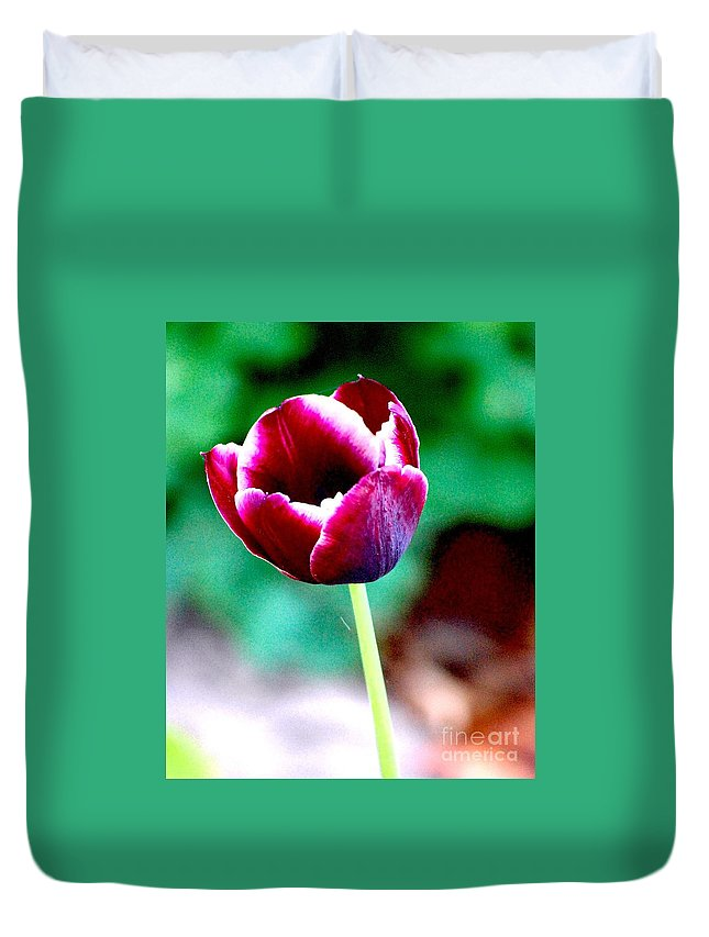 Digital Photo Duvet Cover featuring the photograph Tulip Me by David Lane