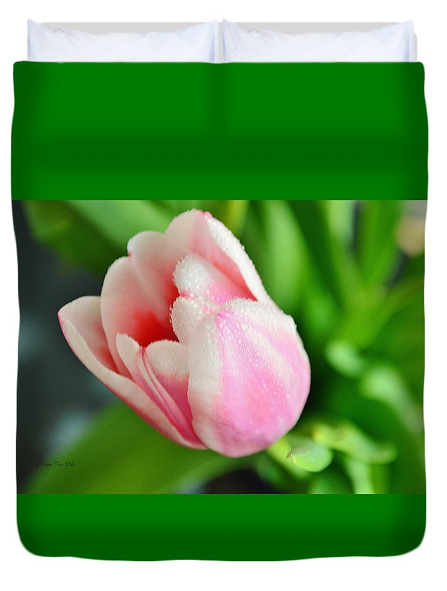 Tulip Duvet Cover featuring the photograph Tulip Portrait by Felicia Tica