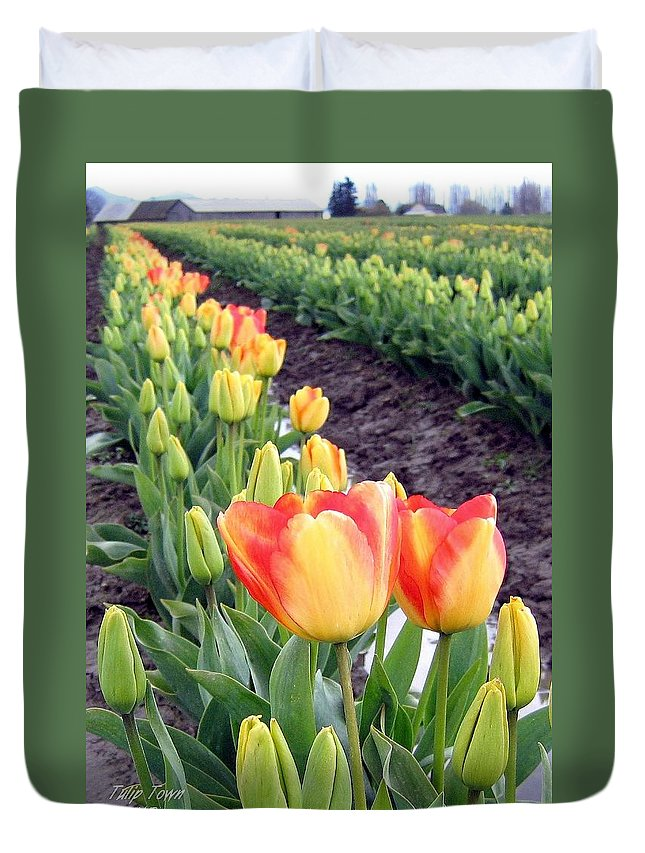 Agriculture Duvet Cover featuring the photograph Tulip Town 6 by Will Borden