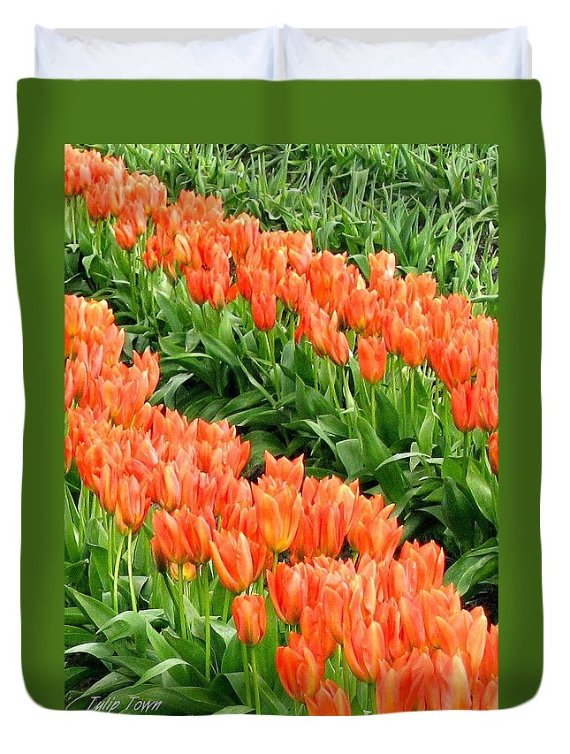 Agriculture Duvet Cover featuring the photograph Tulip Town 7 by Will Borden