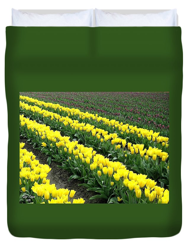 Agriculture Duvet Cover featuring the photograph Tulip Town 9 by Will Borden