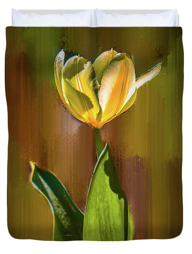 Tulip Duvet Cover featuring the photograph Tulip White Yellow Petals #h5 by Leif Sohlman