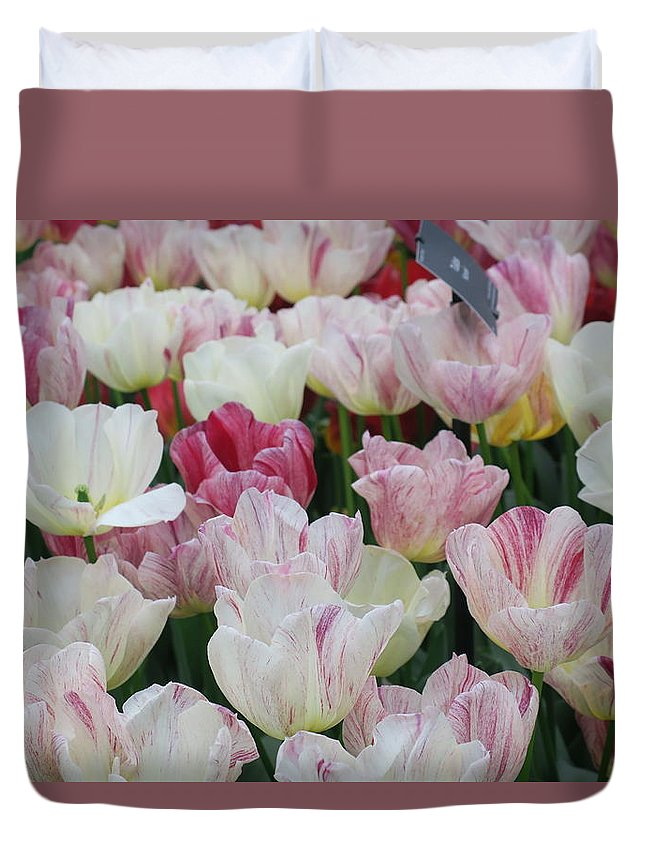 Flowers Duvet Cover featuring the photograph Tulips 3 by Sandra Bourret