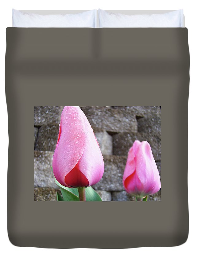 �tulips Artwork� Duvet Cover featuring the photograph Tulips Artwork Flowers 26 Pink Tulip Flowers Art Prints Nature Floral Art by Baslee Troutman