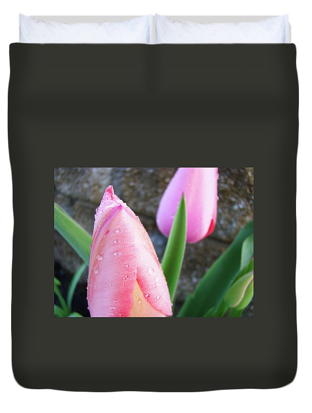 �tulips Artwork� Duvet Cover featuring the photograph Tulips Artwork Pink Tulip Flowers Srping Florals Art Prints Baslee Troutman by Baslee Troutman