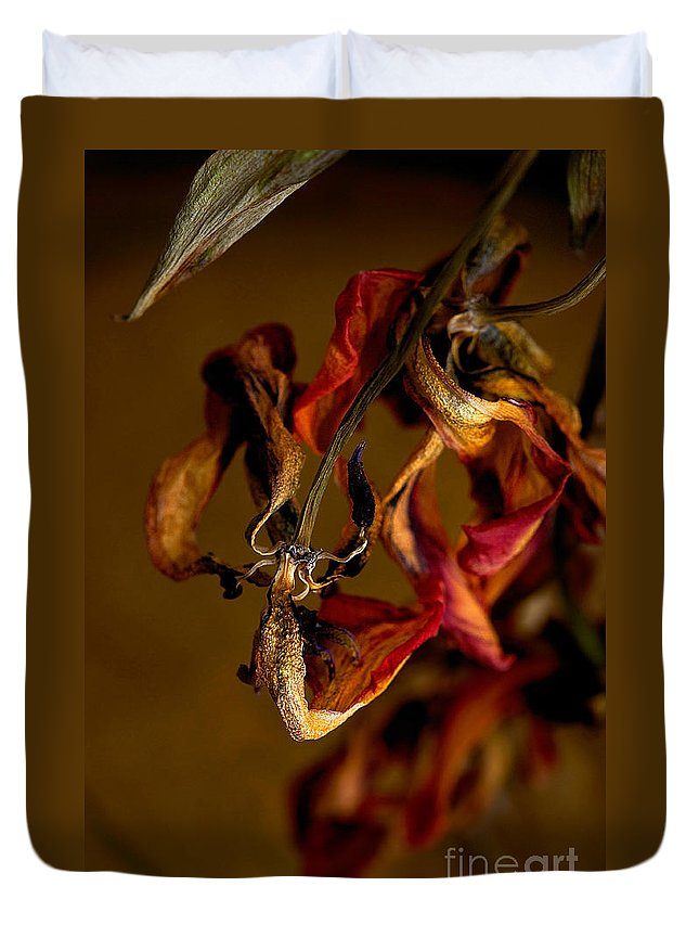 Red Tulip Duvet Cover featuring the photograph Tulip's Demise - A Natural Abstract by Lois Bryan