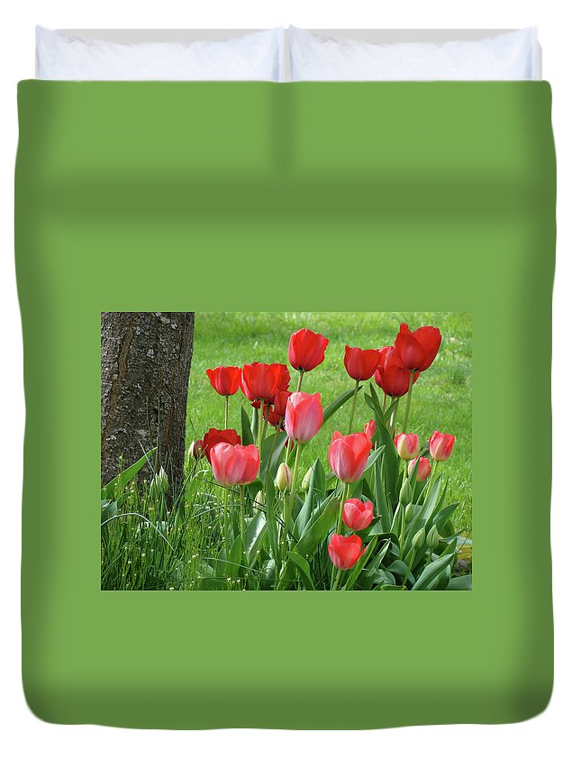�tulips Artwork� Duvet Cover featuring the photograph Tulips Flowers Art Prints Spring Tulip Flower Artwork Nature Art by Baslee Troutman