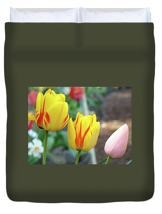 Tulip Duvet Cover featuring the photograph Tulips Garden Art Prints Yellow Red Tulip Flowers Baslee Troutman by Baslee Troutman