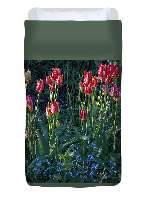 Tulips Duvet Cover featuring the photograph Tulips In Sunshine by Lise-Lotte Larsson