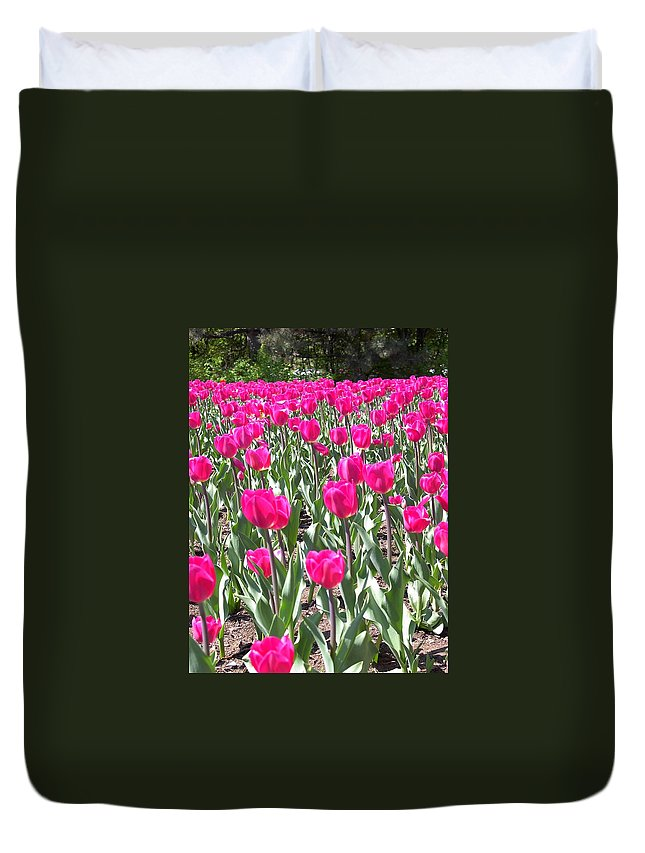 Charity Duvet Cover featuring the photograph Tulips by Mary-Lee Sanders