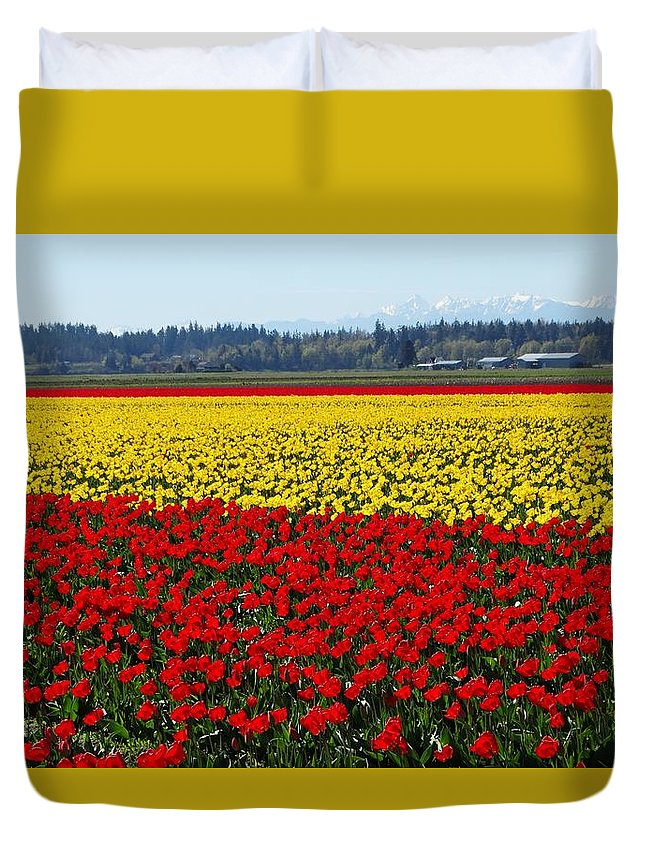 Tulips Duvet Cover featuring the photograph Tulips Of The Skagit Valley by Sandra Peery