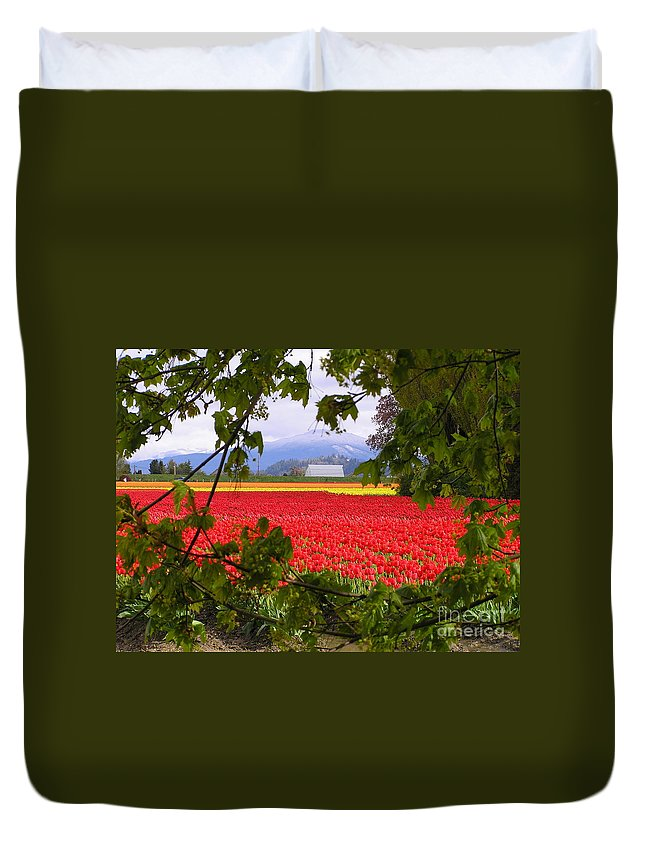 Tulip Duvet Cover featuring the photograph Tulips Secret Window by Louise Magno