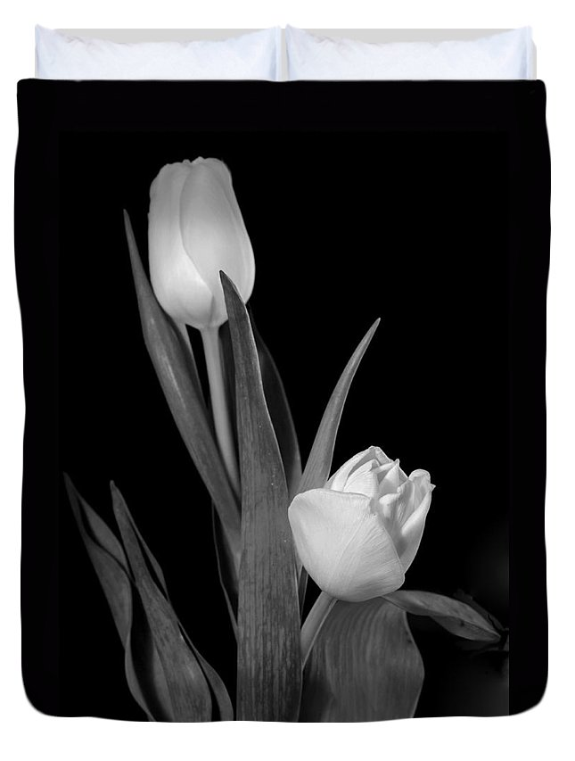 Tulip Duvet Cover featuring the photograph Tulips by Sharon Foster