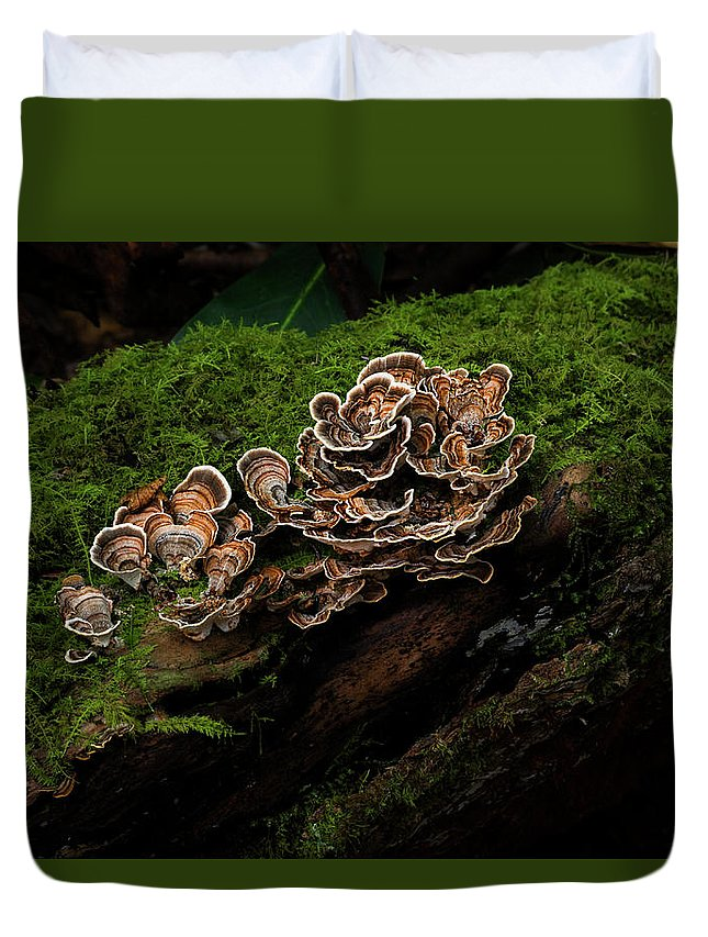 Turkey Tail Duvet Cover featuring the photograph Turkey Tail by Shellena Carter