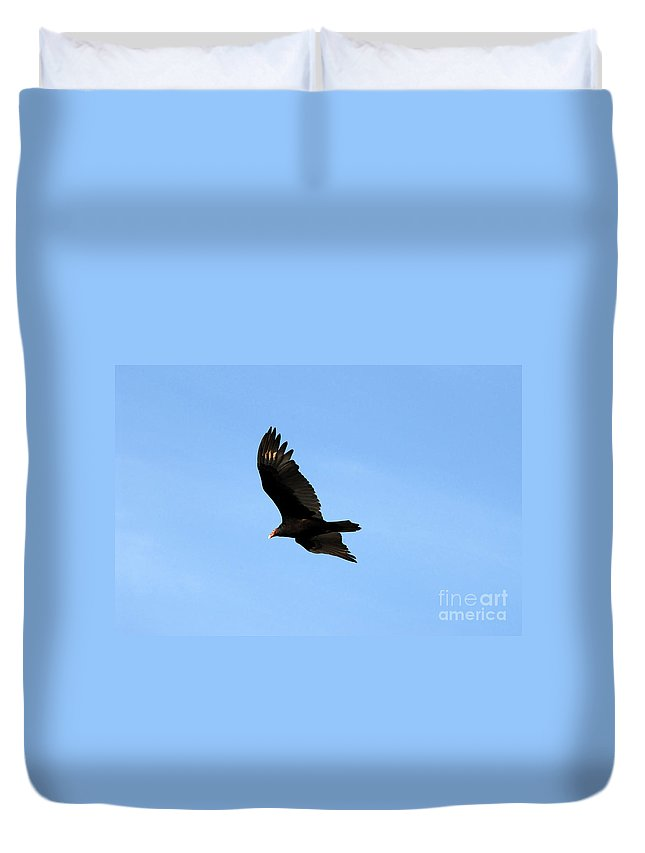 Turkey Vulture Duvet Cover featuring the photograph Turkey Vulture by David Lee Thompson