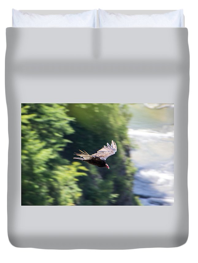 Turkey Vulture Duvet Cover featuring the photograph Turkey Vulture by Kristian Jensen