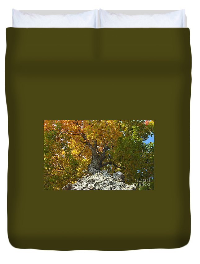 Fall Duvet Cover featuring the photograph Turning Colors by David Lee Thompson