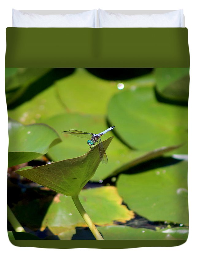 Turquoise Blue Dragonfly On Lily Pad Duvet