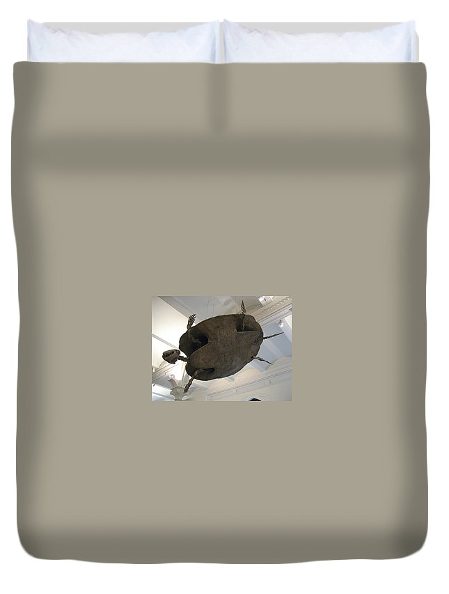 Turtle Duvet Cover featuring the photograph Turtle by Brian McDunn