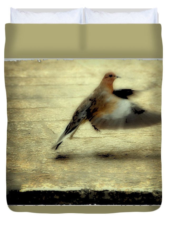 Jewish Duvet Cover featuring the photograph Turtle Dove by Deb Cohen