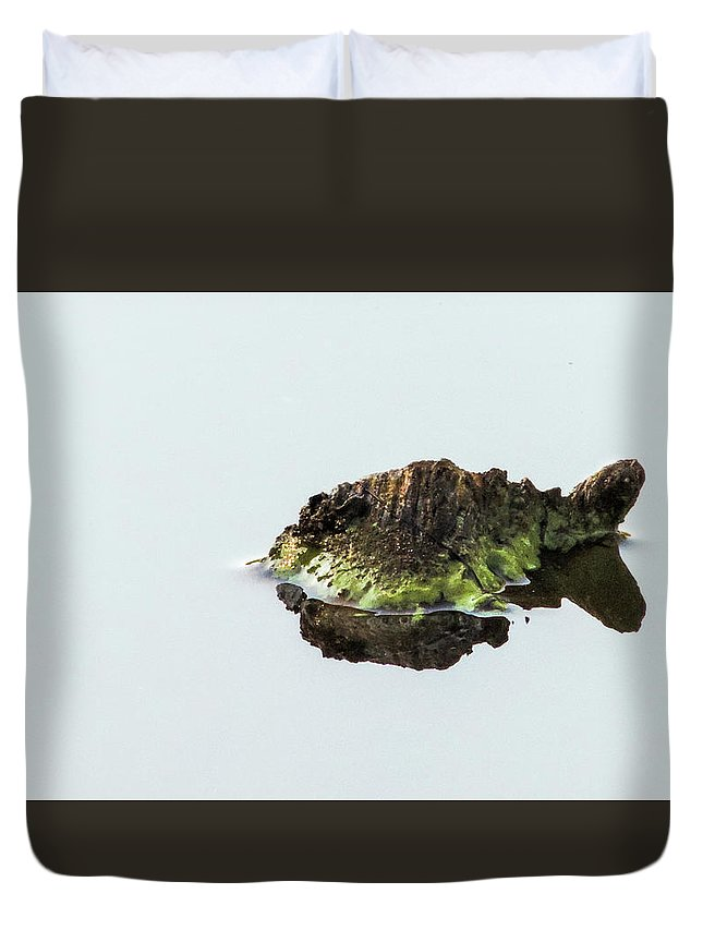 Turtle Duvet Cover featuring the photograph Turtle or Mountain by Randy J Heath