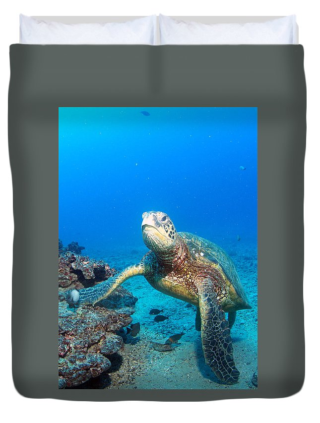 Duvet Cover featuring the photograph Turtle Portrait by Todd Hummel