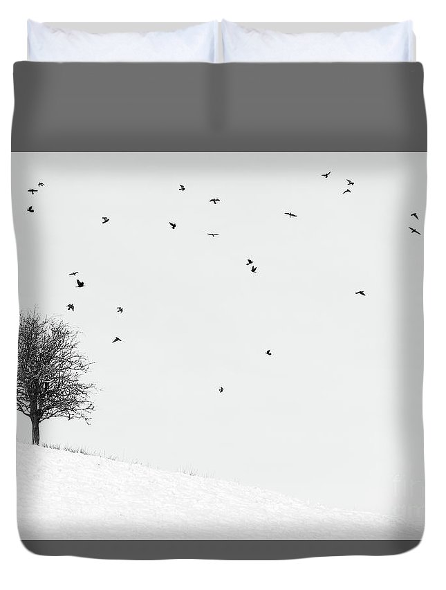 Trees In Winter Duvet Cover featuring the photograph Twenty Seven Birds by Janet Burdon