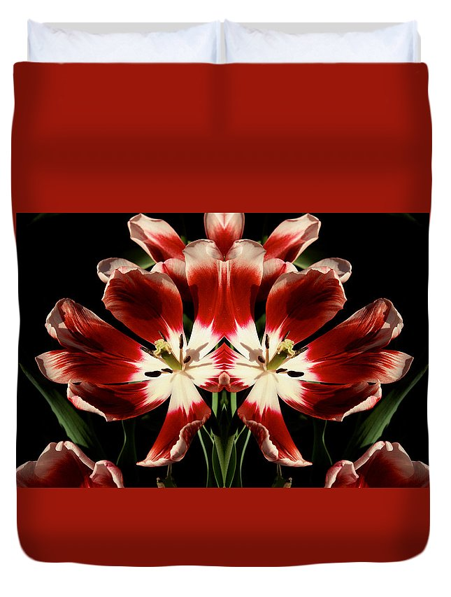 Tulips Duvet Cover featuring the photograph Twin Tulips by Bruce Richardson