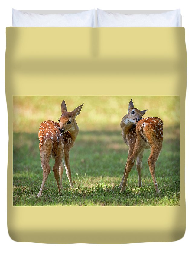 Georgia Duvet Cover featuring the photograph Twins by Charlie Choc