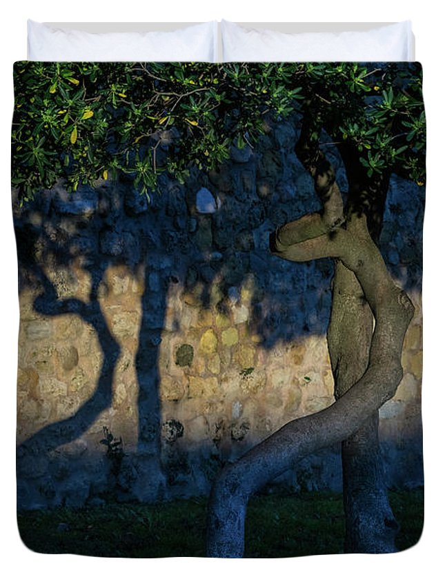 Georgia Mizuleva Duvet Cover featuring the photograph Twisted Early Morning Shadows by Georgia Mizuleva