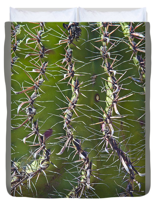 Arizona Duvet Cover featuring the photograph Twisted by Kathy McClure