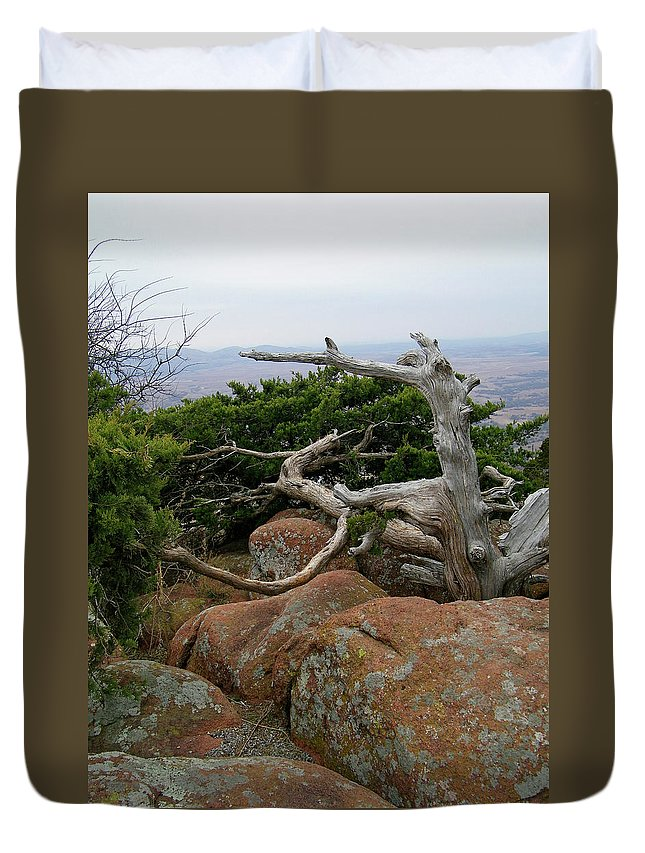 Wichita Mountains Duvet Cover featuring the photograph Twisted View by Gale Cochran-Smith