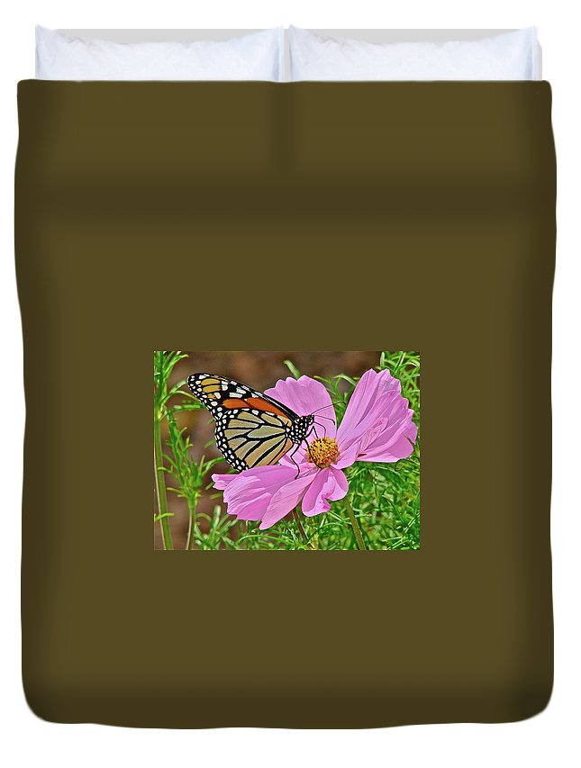Butterfly Duvet Cover featuring the photograph Two Beauties by Diana Hatcher