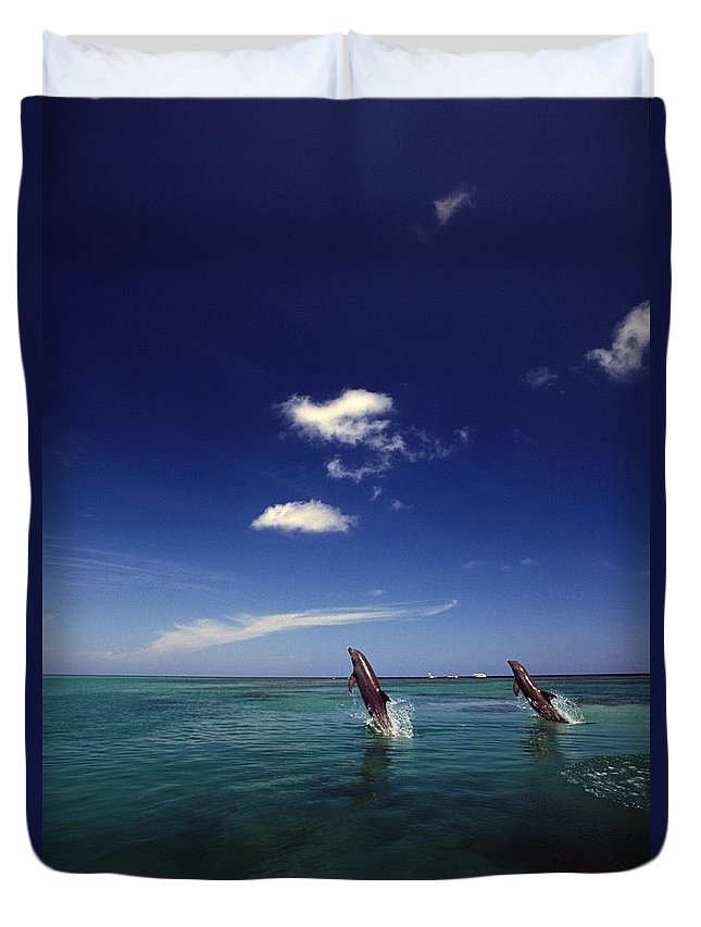 Outdoors Duvet Cover featuring the photograph Two Bottlenose Dolphins Dancing Across by Natural Selection Craig Tuttle