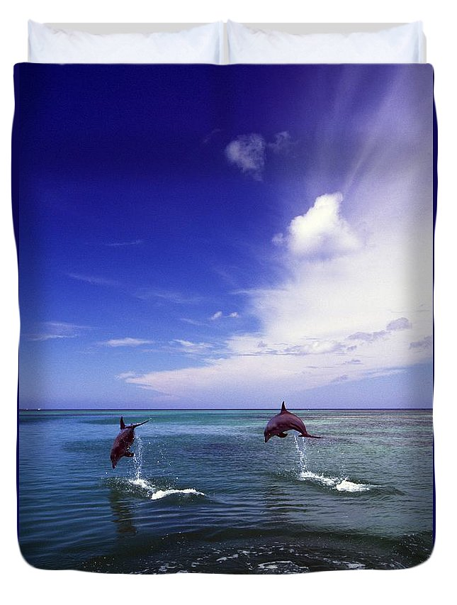 Outdoors Duvet Cover featuring the photograph Two Bottlenose Dolphins by Natural Selection Craig Tuttle