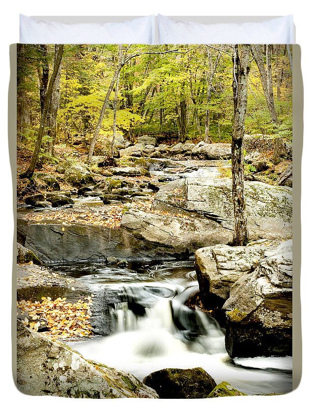 Woods Duvet Cover featuring the photograph Two Falls by Greg Fortier