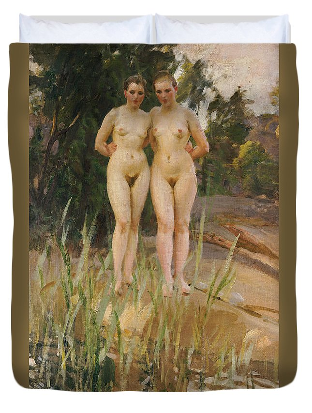 Nude Duvet Cover featuring the painting Two Friends by Anders Leonard Zorn
