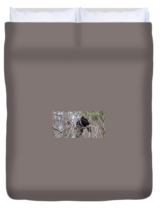 Birds Duvet Cover featuring the photograph Two Friends by Ed Smith
