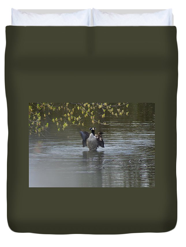 Geese Duvet Cover featuring the photograph Two Geese On A Pond by Alice Markham