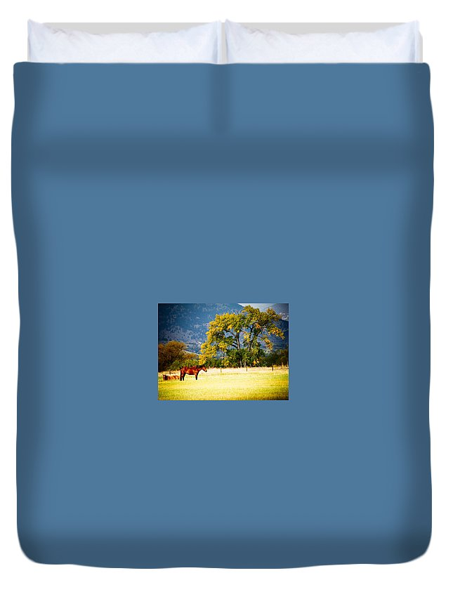 Animal Duvet Cover featuring the photograph Two Horses by Marilyn Hunt