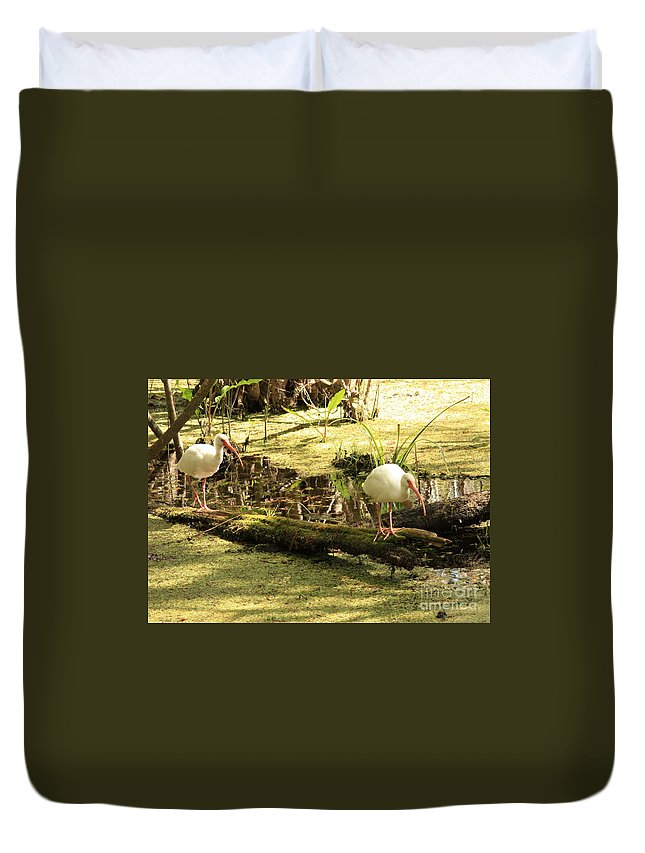 Birds Duvet Cover featuring the photograph Two Ibises On A Log by Carol Groenen