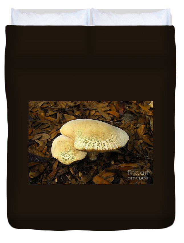 Mushrooms Duvet Cover featuring the photograph Two Mushrooms by David Lee Thompson