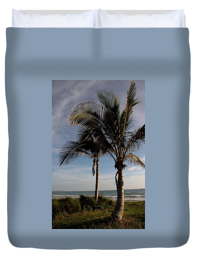Palms Duvet Cover featuring the photograph Two Palms And The Gulf Of Mexico by Susanne Van Hulst