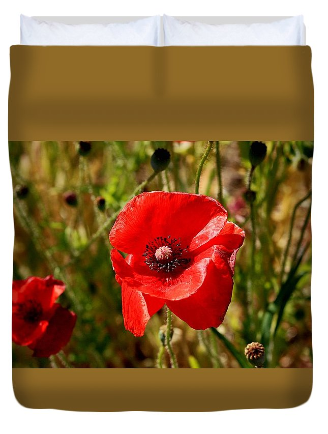 Red Duvet Cover featuring the photograph Two Poppies by Sandra Price