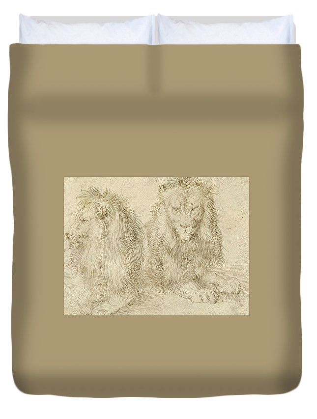 Albrecht Durer Duvet Cover featuring the drawing Two Seated Lions by Albrecht Durer